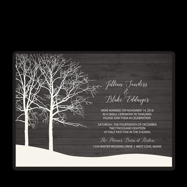 Rustic Barn Wood Winter Wedding Reception Only Invite