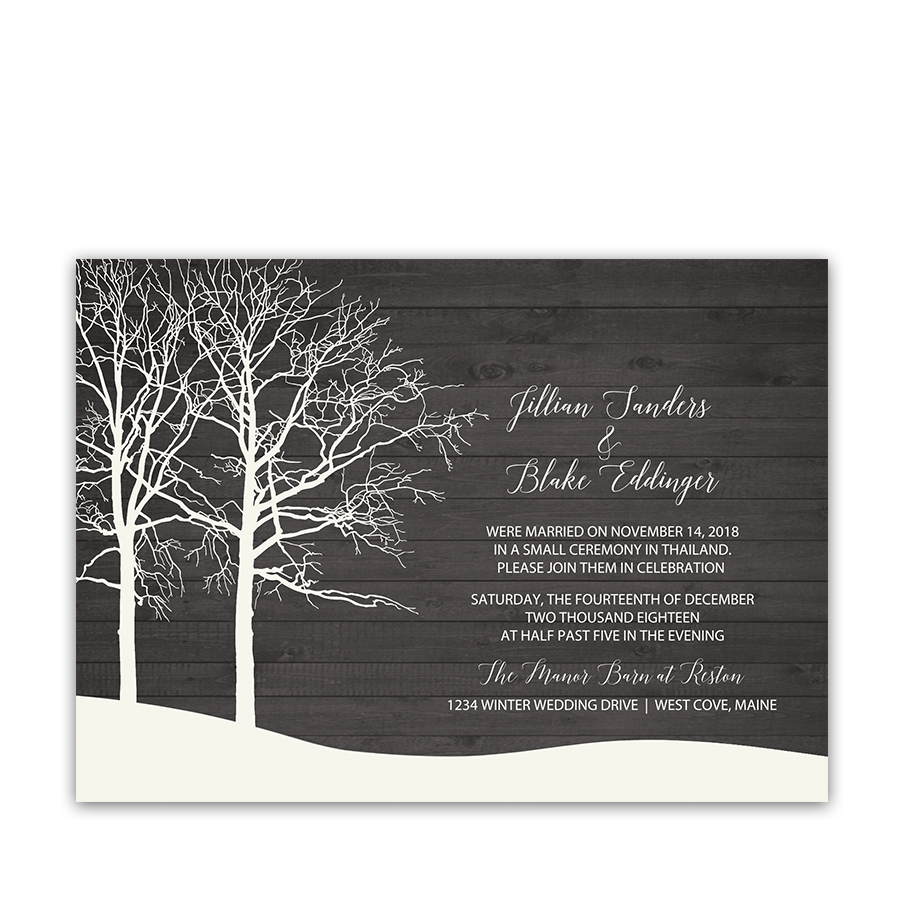 Rustic Barn Wood Winter Wedding Reception Only Invite